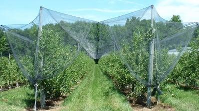 Мрежа срещу градушка  - 6 м