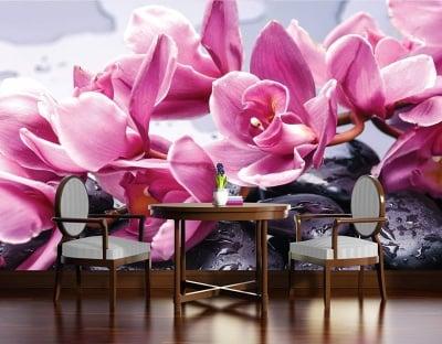 Фототапет Релакс Орхидеи