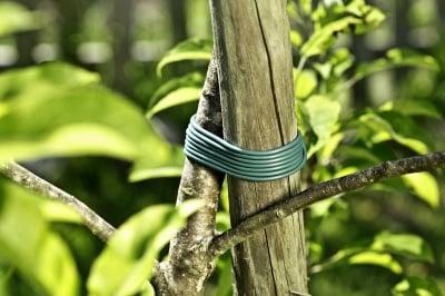 PVC  пластична връзка за привързване на растения 23 м x 3 мм Windhager