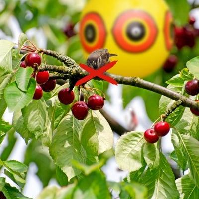 Плашило против птици балон Хищно око Gardigo - 2 броя
