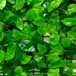 Пано изкуствена зеленина